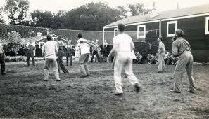 bola-voli-olahraga-rekreasi
